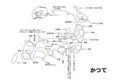 脳内地図.jpg